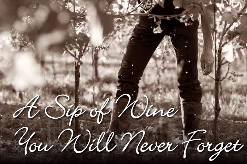 Požirek vina, ki ga ne boste nikdar pozabili