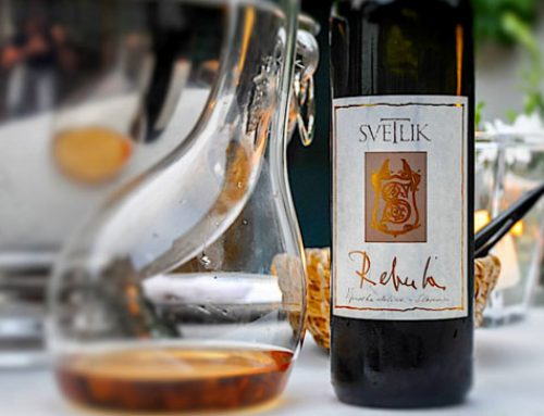 Svetlik Wine – Rebula Maximilian I