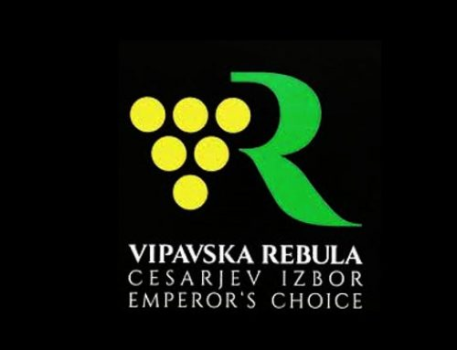 Vipavska rebula – The Emperor's Choice Since 1503
